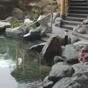 サイボクハムの焼肉と温泉が楽園だった。