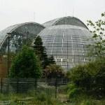 夢の島公園 夢の島熱帯植物館に行った結果・・・