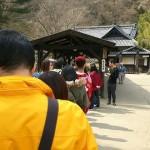 日光江戸村で絶対見るべきアトラクション3選