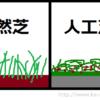 ジャニーズ大運動会での芝毟り事件が話題だが東京ドームの人工芝は・・・