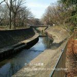 【善福寺川】全部歩いたら非常に歩きやすいコースだった。