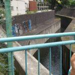【古川】港区探訪 渋谷川+笄川→古川の河口まで歩こう!延長戦アリ
