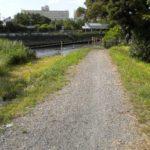 【綾瀬川】沿いを歩くその2(青井~草加)源流へ向かうほど歩道が無くなる説