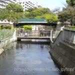 仙台堀川を散歩したら中の堀川と大島川西支川を発見した