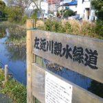 新左近川~新長島川~左近川を全部歩いてみた
