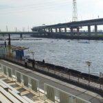 ボートレース江戸川視察 自由席と指定席の入口は別!