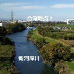 【越戸川】を楽しく歩いてみた【谷中川】源流は・・・