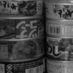 東京ロックダウン生活【1日目】~家族がバラバラ危機感無し~首都閉鎖準備