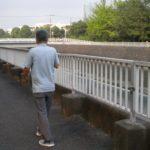 【飲み水】なぜ喫煙者は川にタバコを捨てるのか?【魚が誤飲→人間が食べる】