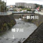 【新井川】を全部歩いてみた【帷子川分水路トンネル】