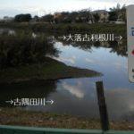 【古隅田川】を全部歩いてみた【大落古利根川】